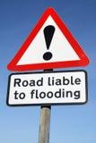 Camino obligado a la inundación. Imágenes de archivo libres de regalías