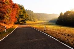 Camino otoñal cerca de Beilstein Fotografía de archivo libre de regalías