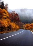 Camino otoñal en el Harz Fotografía de archivo