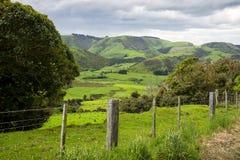 Camino a Owaka Nueva Zelanda Fotos de archivo libres de regalías