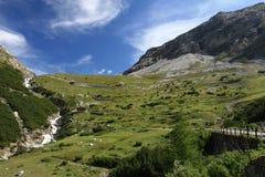 Camino para arriba de Bormio a Passo Stelvio Fotografía de archivo