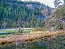 Camino para montar a Robson Provincial Park Foto de archivo