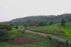 Camino paralelo de colinas verdes fotos de archivo