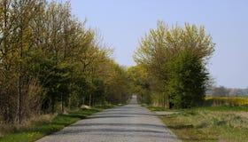 Camino pavimentado Imagen de archivo libre de regalías