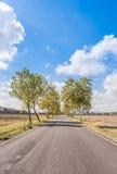 Camino pavimentado en el campo toscano Imagen de archivo