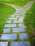 Camino pavimentado en los verdes, vetical Fotografía de archivo