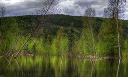 Camino perdido de la charca del castor, río, Woodstock NH 03262 Foto de archivo