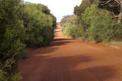 Camino pintoresco en la isla del canguro en sur de Australia Fotografía de archivo libre de regalías