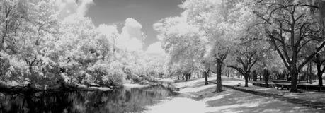 Camino por el agua Fotografía de archivo