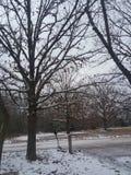 Camino pt2 del invierno Foto de archivo