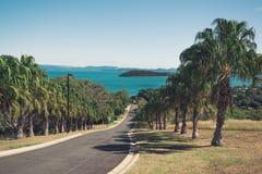 Camino que lleva abajo al mar rodeado por las palmeras fotos de archivo libres de regalías