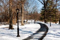 Camino que recorre alineado poste de la lámpara foto de archivo libre de regalías