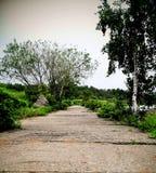 Camino que recorre en el parque Imagen de archivo