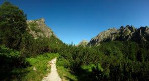 Camino que recorre en montañas Imágenes de archivo libres de regalías