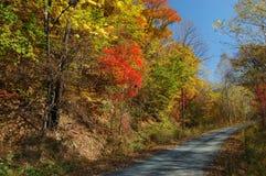 Camino que recorre por la ladera colorida Fotografía de archivo libre de regalías