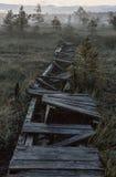 Camino quebrado en un pantano en noche oscura Imagenes de archivo