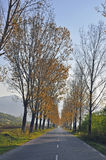Camino recto Fotografía de archivo