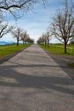 Camino recto Fotografía de archivo libre de regalías