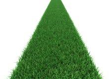 Camino recto de la hierba en un fondo blanco Fotografía de archivo
