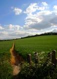 Camino recto a través de tierras de labrantío Foto de archivo libre de regalías