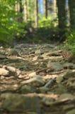 Camino rocoso fotografía de archivo
