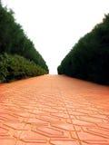 Camino rojo Fotografía de archivo libre de regalías