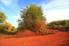 Camino rojo Foto de archivo libre de regalías