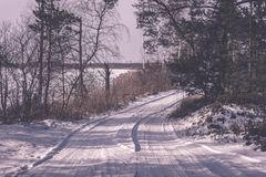 camino romántico de la grava en el bosque del árbol del invierno - efecto retro del vintage Foto de archivo