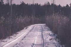 camino romántico de la grava en el bosque del árbol del invierno - efecto retro del vintage Imagenes de archivo