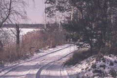 camino romántico de la grava en el bosque del árbol del invierno - efecto retro del vintage Fotos de archivo