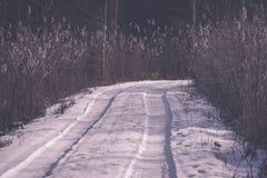 camino romántico de la grava en el bosque del árbol del invierno - efecto retro del vintage Foto de archivo libre de regalías