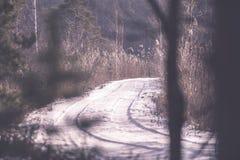 camino romántico de la grava en el bosque del árbol del invierno - efecto retro del vintage Fotografía de archivo libre de regalías