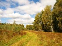 Naturaleza rusa en el final del verano Foto de archivo libre de regalías
