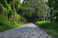 camino rural del camino de piedra Imagen de archivo libre de regalías