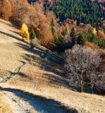 Camino rural en cuesta de montaña del otoño Imágenes de archivo libres de regalías