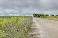 Camino rural en Missouri Imagen de archivo