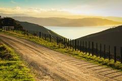 Camino rural Metalled con la cerca del bastón y de alambre, península de Mahia, isla del norte, Nueva Zelanda fotografía de archivo libre de regalías
