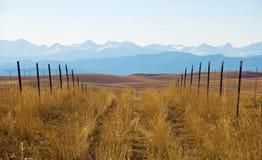 Camino rural que lleva a las montañas nebulosas imagen de archivo