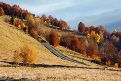 Camino rural y otoño de oro en montaña Foto de archivo