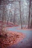 Camino sin fin Imagen de archivo