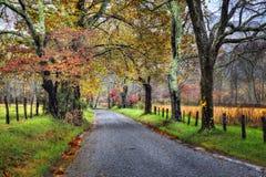 Camino sin pavimentar de la caída con los árboles coloridos Foto de archivo