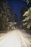 Camino sitiado por la nieve en el bosque en cerca Foto de archivo libre de regalías