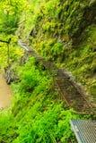 Camino sobre el río de Hornad en Slovensky Raj. Imágenes de archivo libres de regalías