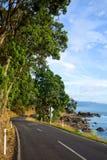 Camino soleado de la costa costa Foto de archivo libre de regalías