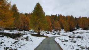 Camino solo Foto de archivo