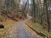 Camino solo del otoño, Toronto, Ontario, Canadá Imagen de archivo