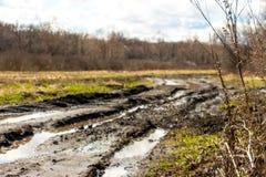 Camino sucio de la primavera Foto de archivo libre de regalías