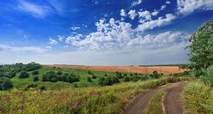 Camino sucio rural Imagen de archivo