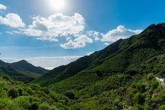 Camino TF-12 en el parque rural de Anaga - picos con el bosque antiguo en Te Imagen de archivo libre de regalías