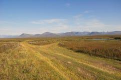 Camino todo terreno a la tundra Foto de archivo libre de regalías